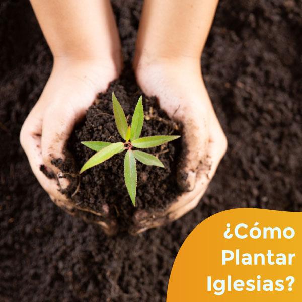 ¿Cómo Plantar Iglesias?